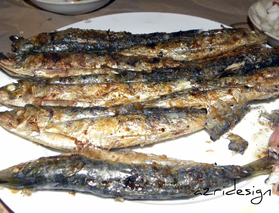 The famous Sardines of Tara n Youssef - Alhoceima, Morocco 2011