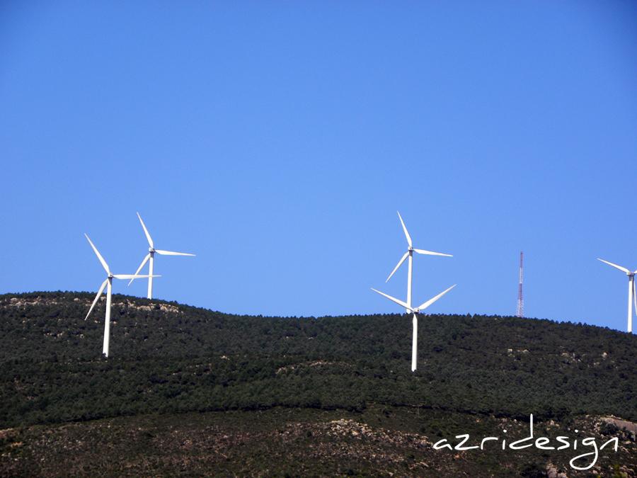 Les moulins de Ksar Sghir - Tanger-Tetouan, Morocco, 2011