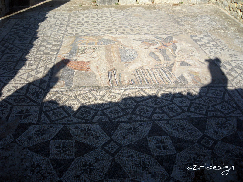 Mosaic-Diana leaves her bath, Volubilis, Meknes, Morocco, 2008