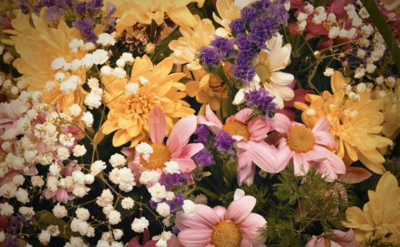 The Language of Flowers: Meaning of Flowers