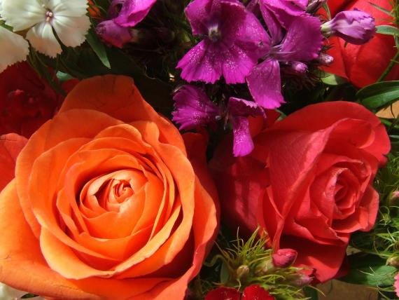 Roses Bouquet - It's a Beautiful Day..
