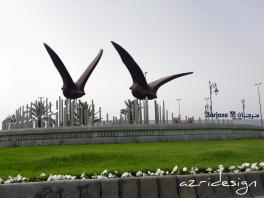 Les colombes de Tetouan - Tetouan, Morocco, 2011