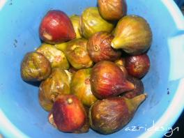 Figs from Arrif - Alhoceima, Morocco 2011