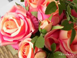 Pink orange bunch of roses