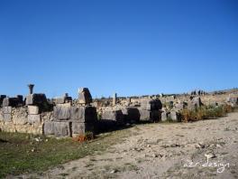 La cité antique de Volubilis (Oualili), Meknes, Morocco, 2008