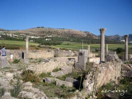 Ruins of the Capitol, Volubilis, Meknes, Morocco, 2008