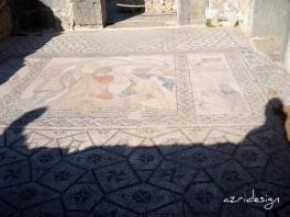 Mosaic, Volubilis Roman Ruins, Meknes, Morocco, 2008