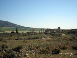Volubilis, General view, Meknes, Morocco, 2008